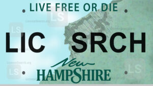 Sample New Hampshire License Plate Lookup