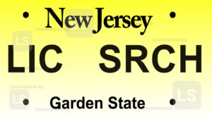 Sample New Jersey License Plate Lookup